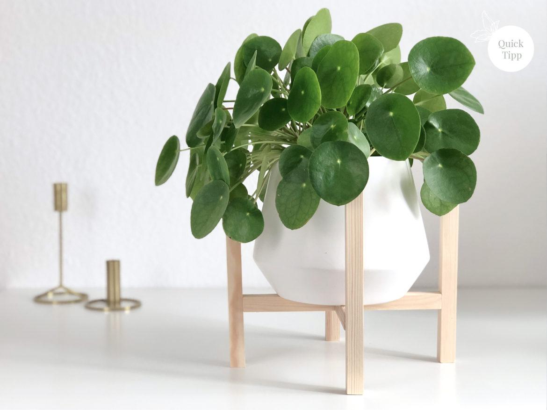 DIY elfenweiss, doityourself, Pflanzen, Ständer, Holzständer, Pflanzenhänger, Mid century Plant Stand, selbermachen